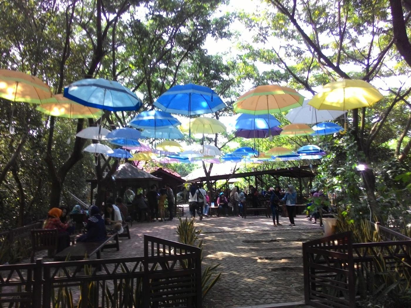 Pesona Wisata Alam Hutan Bakau Pantai Indah Kapuk